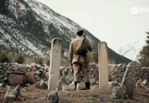 Эльдар Жаникаев: «Я вернулся домой»